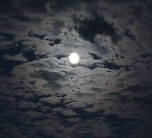 Moon in the Clouds by Tammy F
