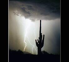 Intertwine  Lightning by Bo Insogna