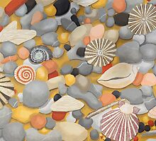 Pebbles and Shells by emmafifield