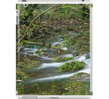 Woodland Stream, Monk's Dale iPad Case/Skin