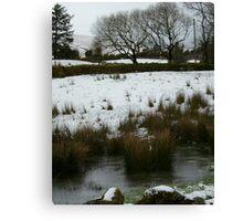 Irish Winter  Canvas Print