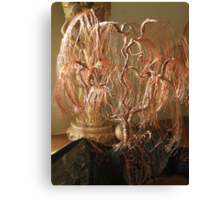 Weeping Willow on Obsidian Canvas Print