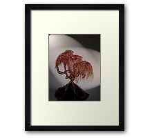 Copper Tree on Obsidian Framed Print