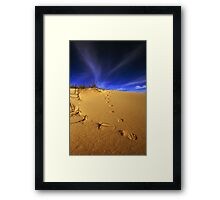 Fox tracks. Framed Print
