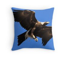 Wedge-Tailed Eagle, Tasmania Throw Pillow