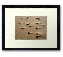 Sand Storm in Macro Framed Print