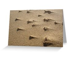 Sand Storm in Macro Greeting Card