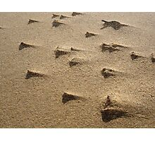 Sand Storm in Macro Photographic Print