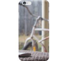 Quiet Cruiser iPhone Case/Skin
