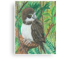 Spectacle Owl - Oil Pastels Canvas Print