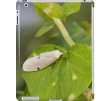 insect on leaf iPad Case/Skin