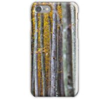Colorful autumnal landscape iPhone Case/Skin