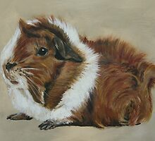 """Lucky"" Gorgeous Guinea Pig by lyndseyart"