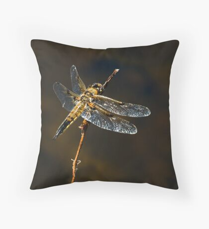 FOUR-SPOTTED SKIMMER Throw Pillow