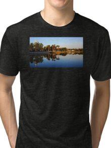 Celebration Orlando Tri-blend T-Shirt