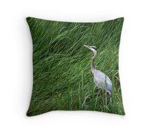 Heron in Tall Grass Throw Pillow
