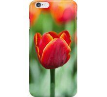 Red tulips closeup in park iPhone Case/Skin
