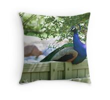 Restful Display Throw Pillow