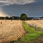 After the Harvest by Hans Kawitzki
