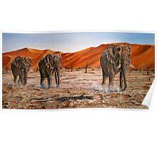 """Elephants - Namib Trek"" - oil painting Poster"