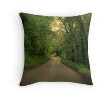 The Road to Home Throw Pillow