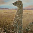 """Meerkat Sentry"" - Oil Painting by Avril Brand"
