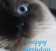 Chopper - Happy Birthday Kitten by krazykat