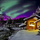 Winter by Devon Mallison