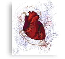 drawing of the heart, anatomical Canvas Print