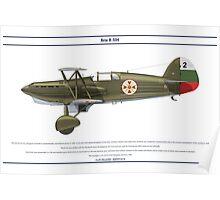 Avia B-534 Bulgaria 1 Poster