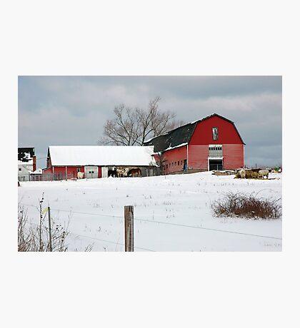 Nicholson Farms Photographic Print