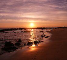 Ocean Sunset by Twirpy