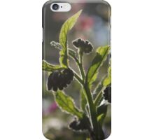 Hairy buds iPhone Case/Skin