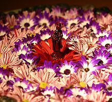 kwan yin mandala by Brian Wallace
