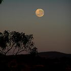 Moon over the Weddin Range by Jan Richardson