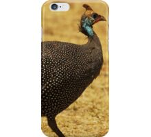 Bird of the Plains iPhone Case/Skin