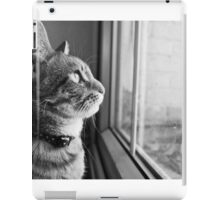 What's out there? iPad Case/Skin