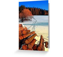 Timber in winter wonderland | landscape photography Greeting Card