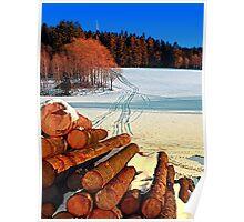Timber in winter wonderland | landscape photography Poster
