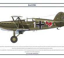 Avia B-534 Germany 2 by Claveworks