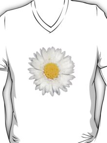 Nine Common Daisies Isolated on A Black Backgound T-Shirt