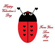 Love Bug (Valentine's Day) Photographic Print
