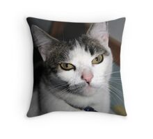 Why must you embarrass me? Throw Pillow