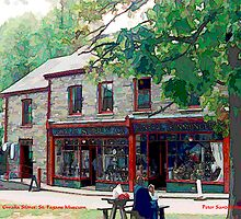 Gwalia Stores, St. Fagans (General View) by Peter Sandilands