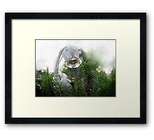 Ghost Flower Framed Print