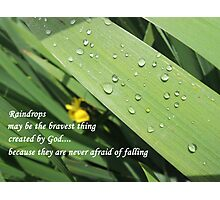 Brave Little Raindrops Photographic Print