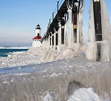 Ice Coated by Adam Bykowski