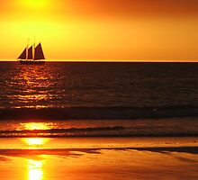 Sails in The Sunset by stuart