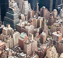 Aerial view of NY by Nelson Mineiro