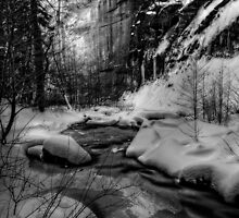 The Wonders of Winter by Sue  Cullumber